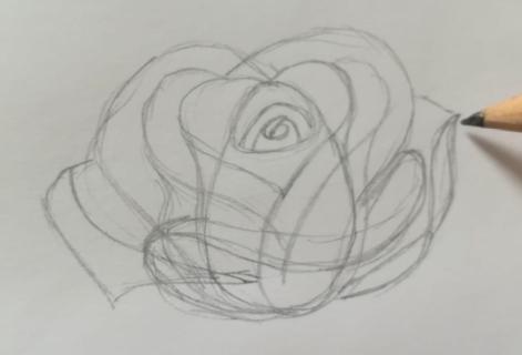 disegnare rosa