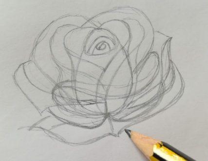 come disegnare una rosa semplice