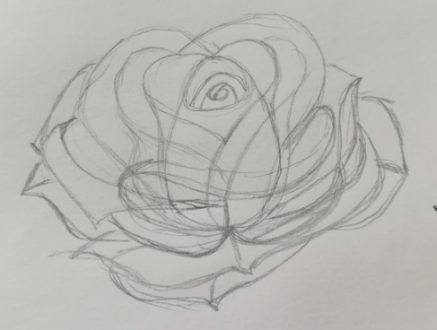 come si disegnano le rose