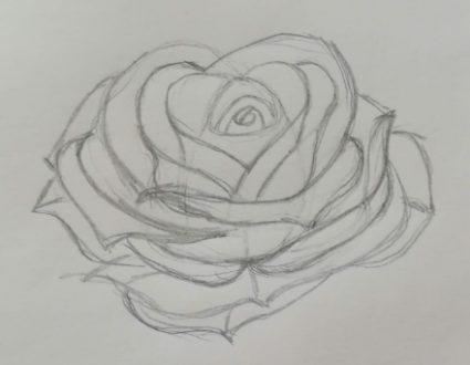 come disegnare una rosa a matita