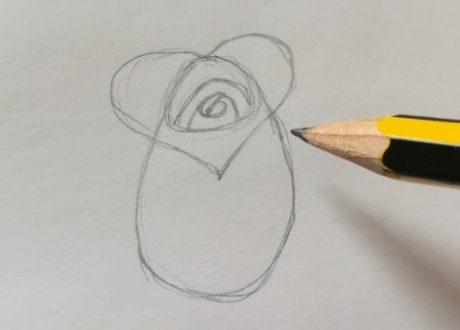 rose da disegnare