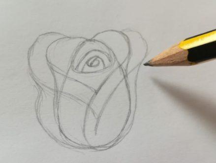 disegnare un bocciolo di rosa